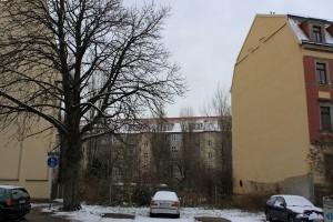 Noch herrscht winterliche Ruhe auf der verwilderten Brache Alttrachau 28.