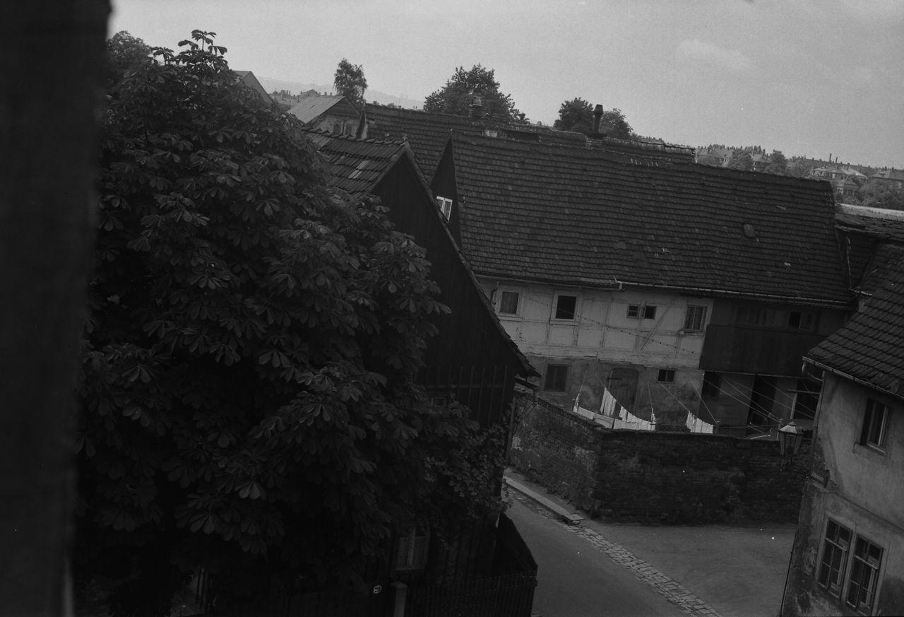 Die Straßenecke Alttrachau/Gaußstraße mit Hensels Haus und Kastanie, ca. 1965 (freundlicherweise zur Verfügung gestellt von Peter Pietzsch).